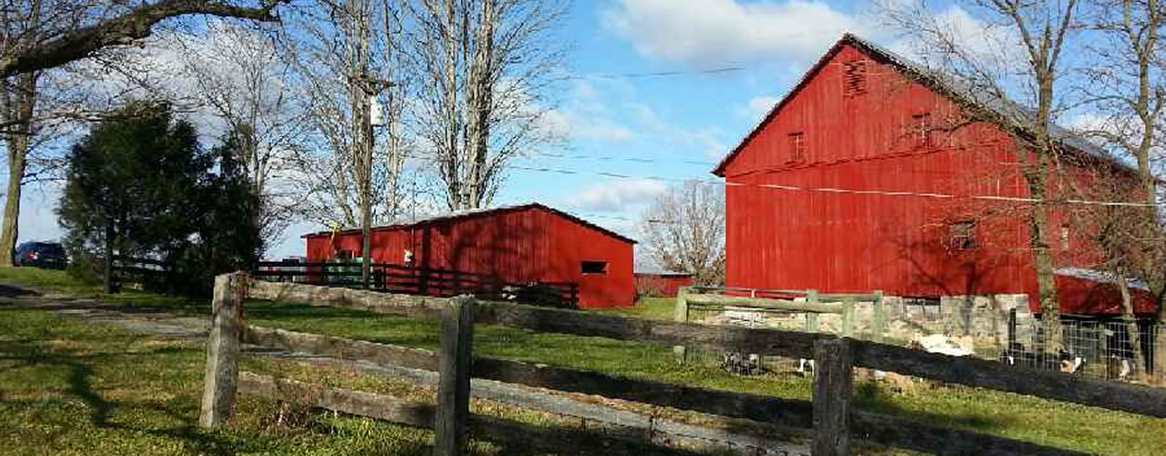 Red barns on Clark's Farm