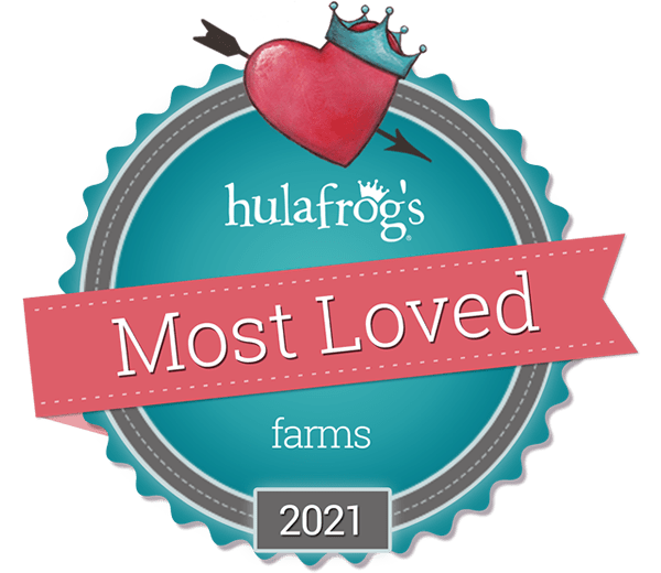 Hula Frogs Most Loved Farm 2019